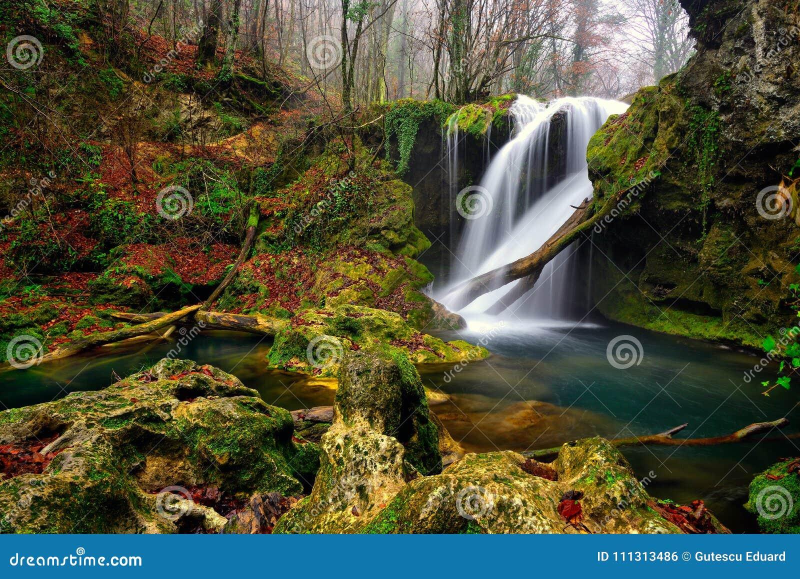 Όμορφος καταρράκτης τοπίων της Ρουμανίας στο δασικό και φυσικό φυσικό πάρκο Cheile Nerei