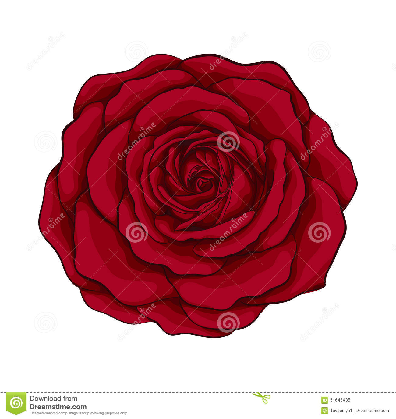 όμορφος κόκκινος ανασκόπησης αυξήθηκε λευκό