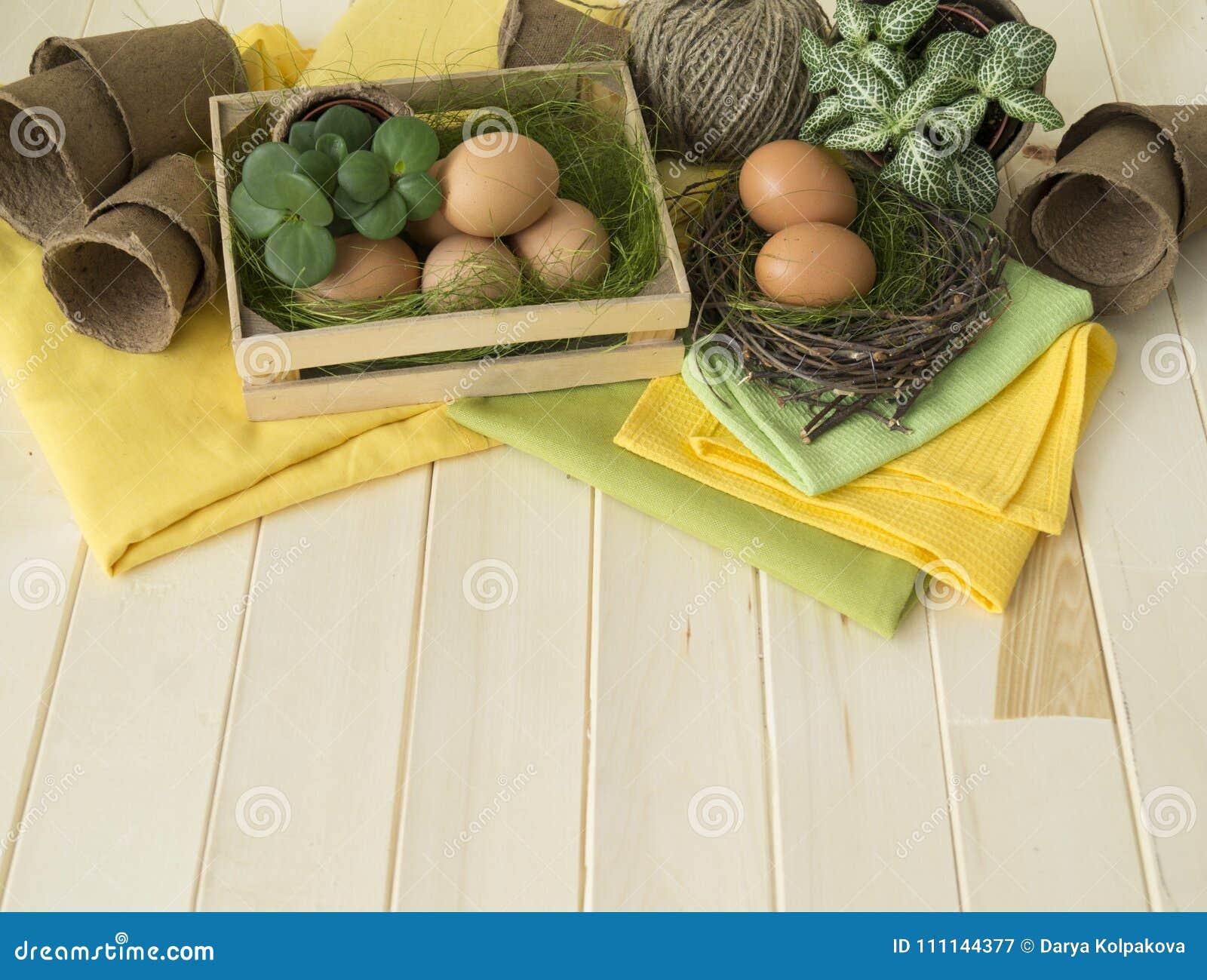 όμορφος λεκές διακοπών αυγών Πάσχας ανασκόπησης Διακοσμητική ρύθμιση Πάσχας με τα λουλούδια, τις εγκαταστάσεις, τα δοχεία και τα