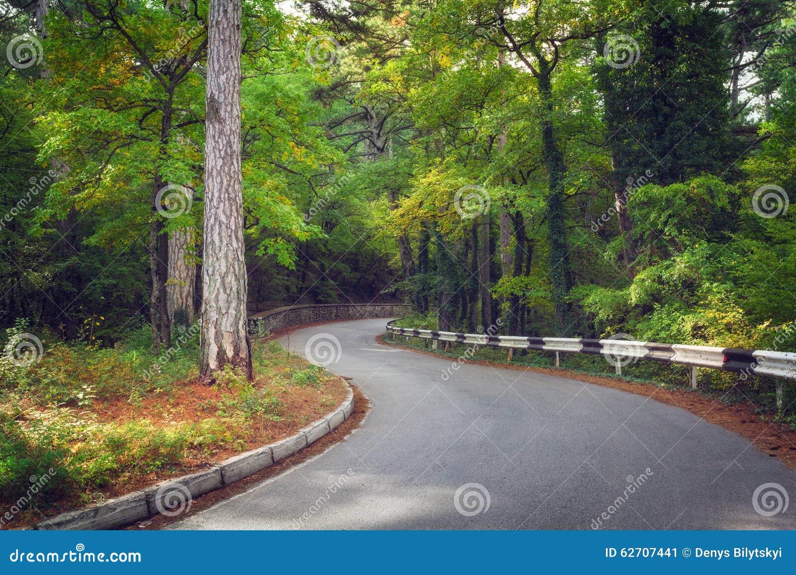 Όμορφος δρόμος ασφάλτου στο δάσος φθινοπώρου στην ανατολή