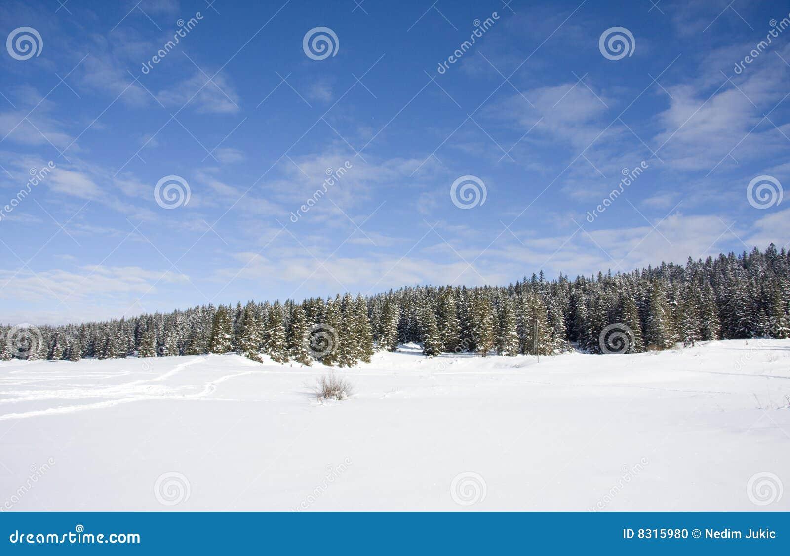 όμορφος χειμώνας σκηνής