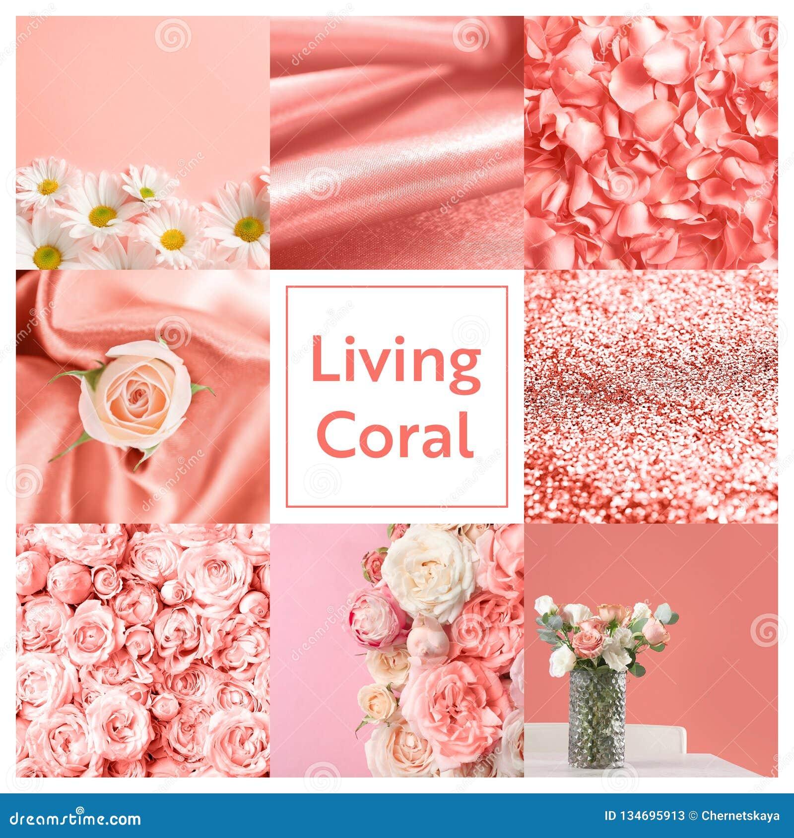Όμορφο κολάζ με το χρώμα κοραλλιών διαβίωσης