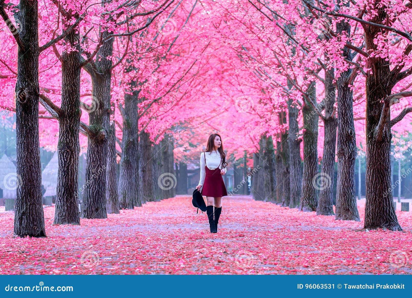 Όμορφο κορίτσι με τα ρόδινα φύλλα στο νησί Nami