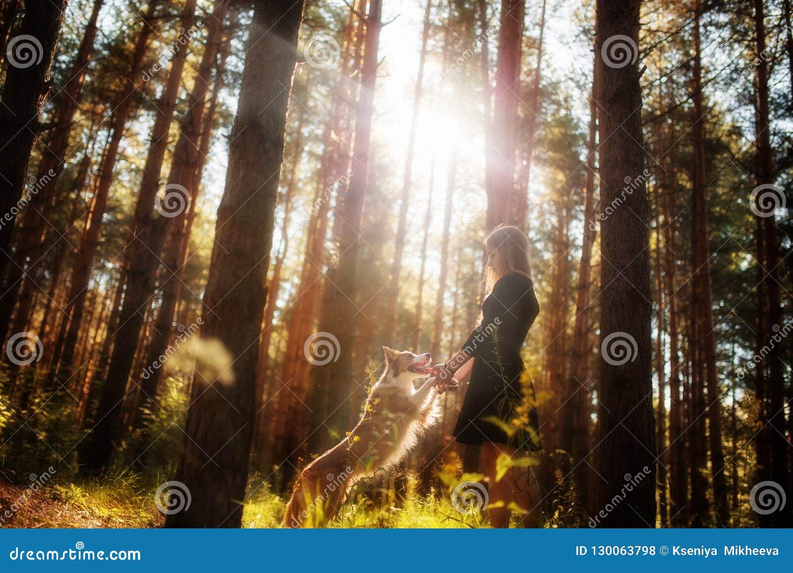 Όμορφο κορίτσι στο φόρεμα στο δάσος με το σκυλί της που πηδά και που παίζει