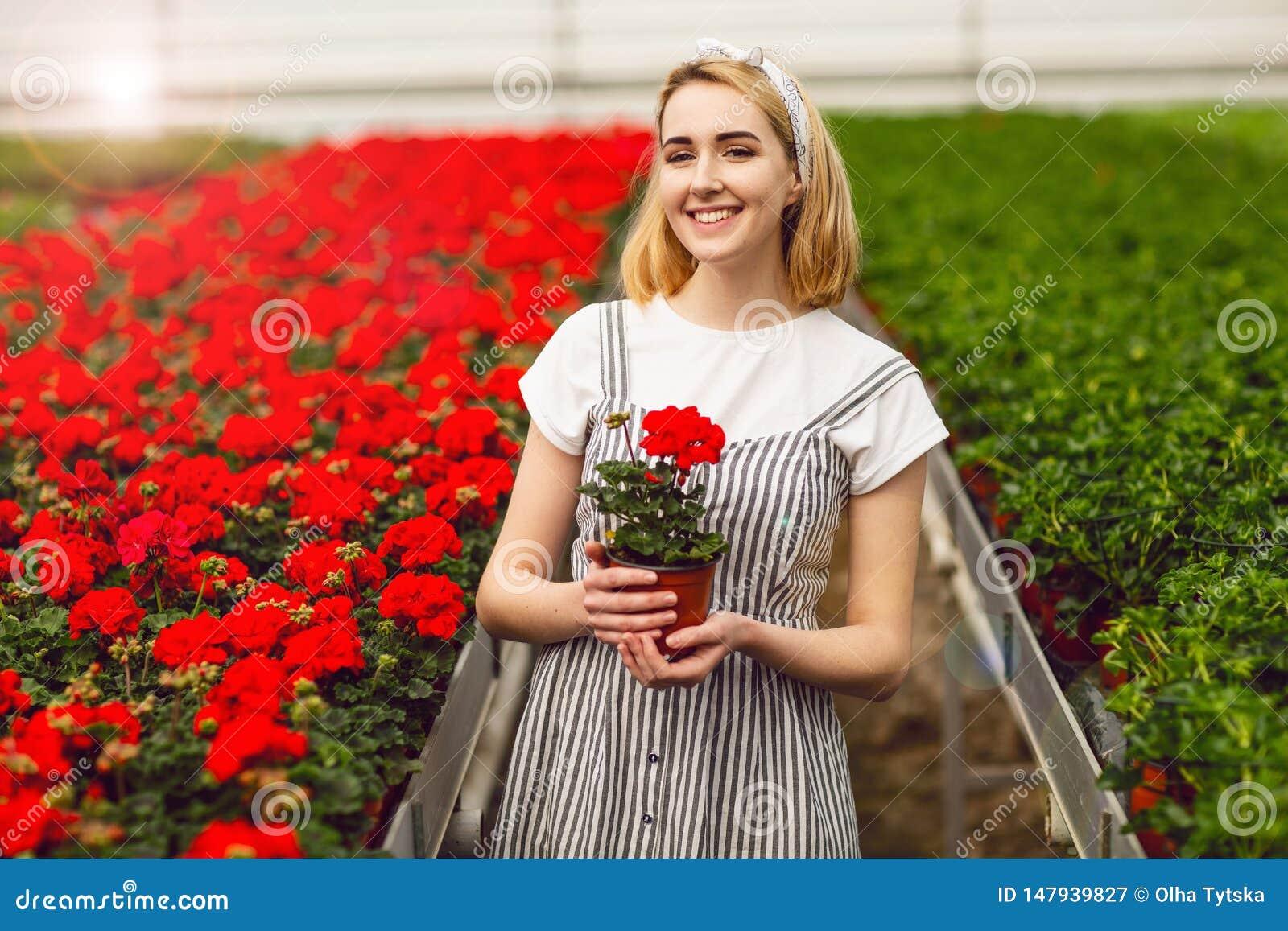 Όμορφο νέο χαμογελώντας κορίτσι, εργαζόμενος με τα λουλούδια στο θερμοκήπιο Εργασία έννοιας στο θερμοκήπιο, λουλούδια r