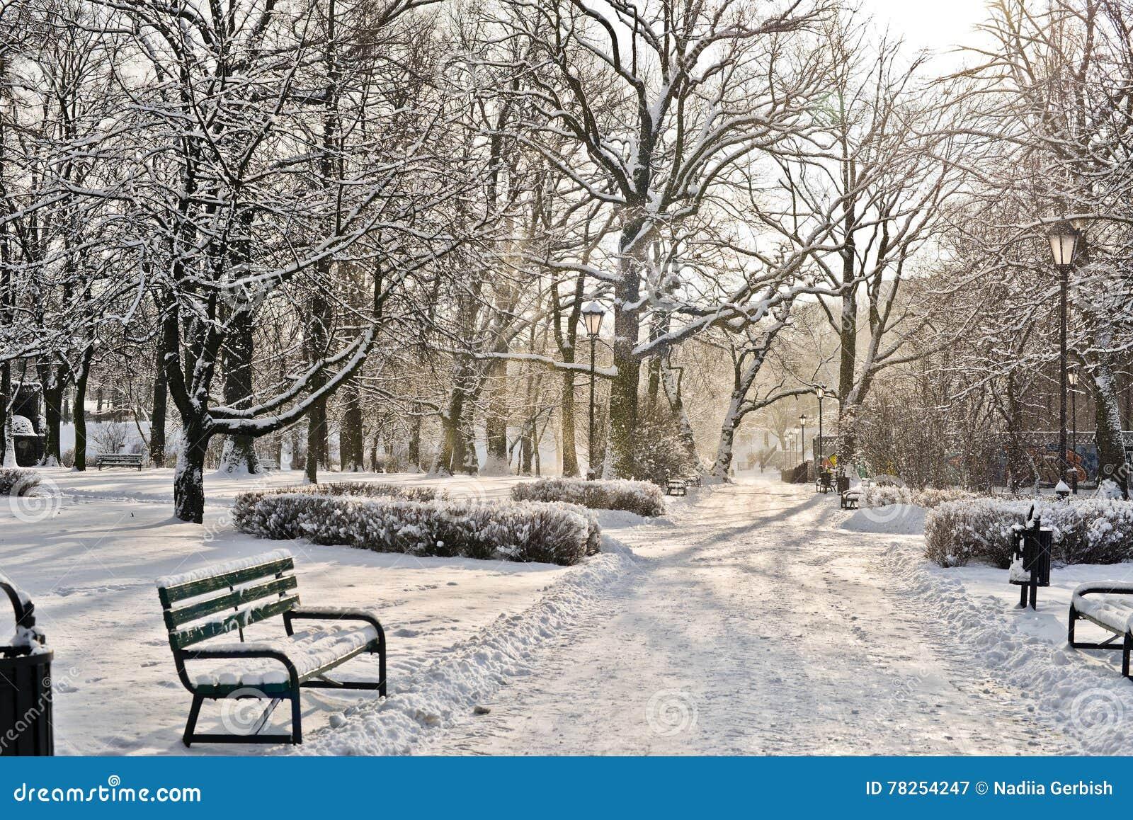 Όμορφο πάρκο το χειμώνα