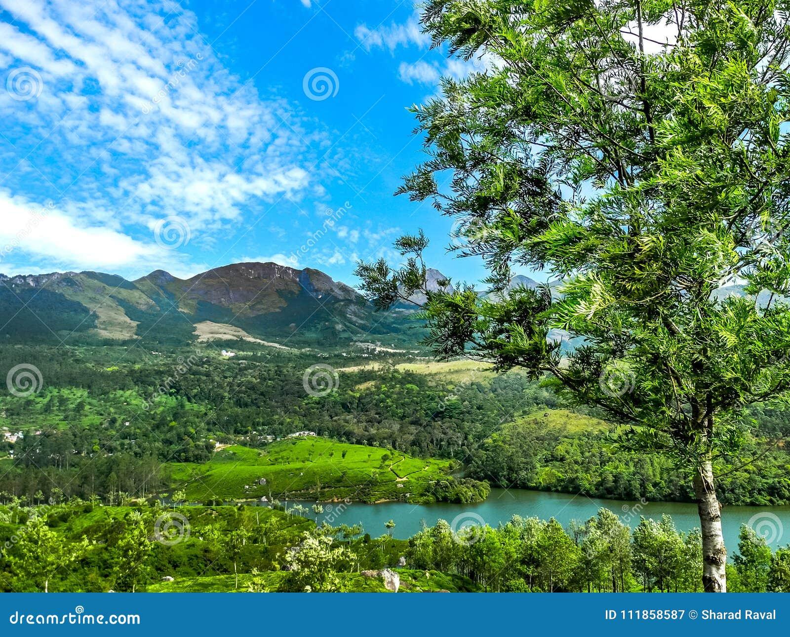 Όμορφο τοπίο με το άγριους δάσος και τον ποταμό Periyar, Κεράλα, Ινδία