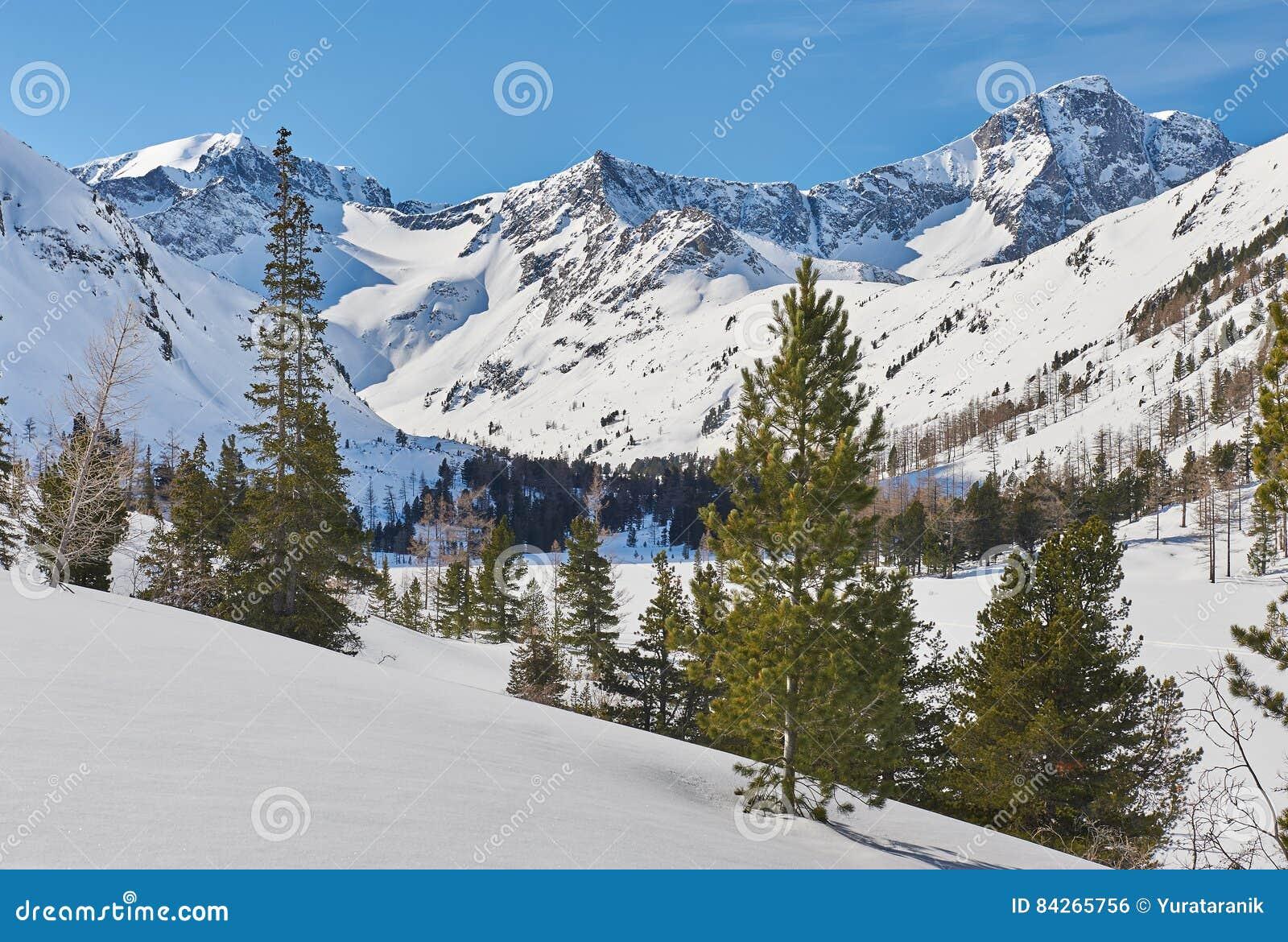 Όμορφο χειμερινό τοπίο, βουνά Altai, Σιβηρία, Ρωσία