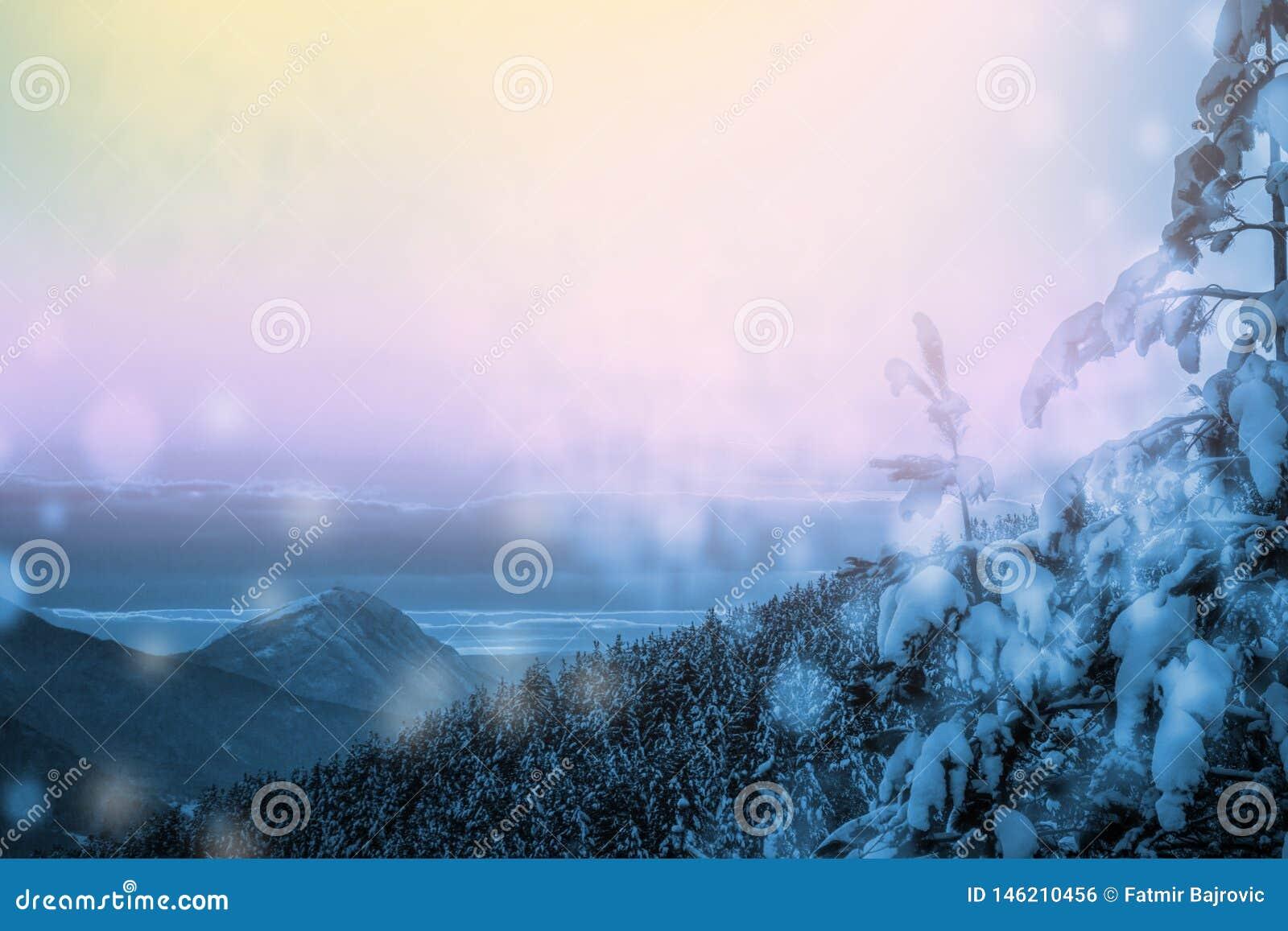 Όμορφο χειμερινό τοπίο με το δάσος, τα δέντρα και την ανατολή Πρωί Winterly μιας νέας ημέρας Πορφυρό χειμερινό τοπίο με το ηλιοβα