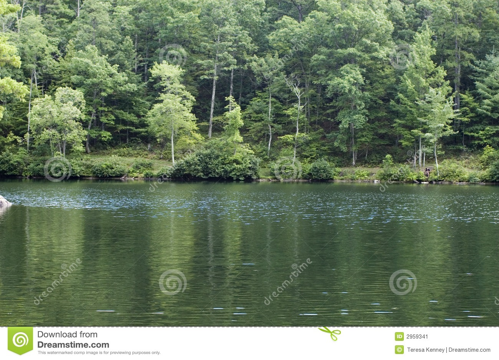 όχθη της λίμνης