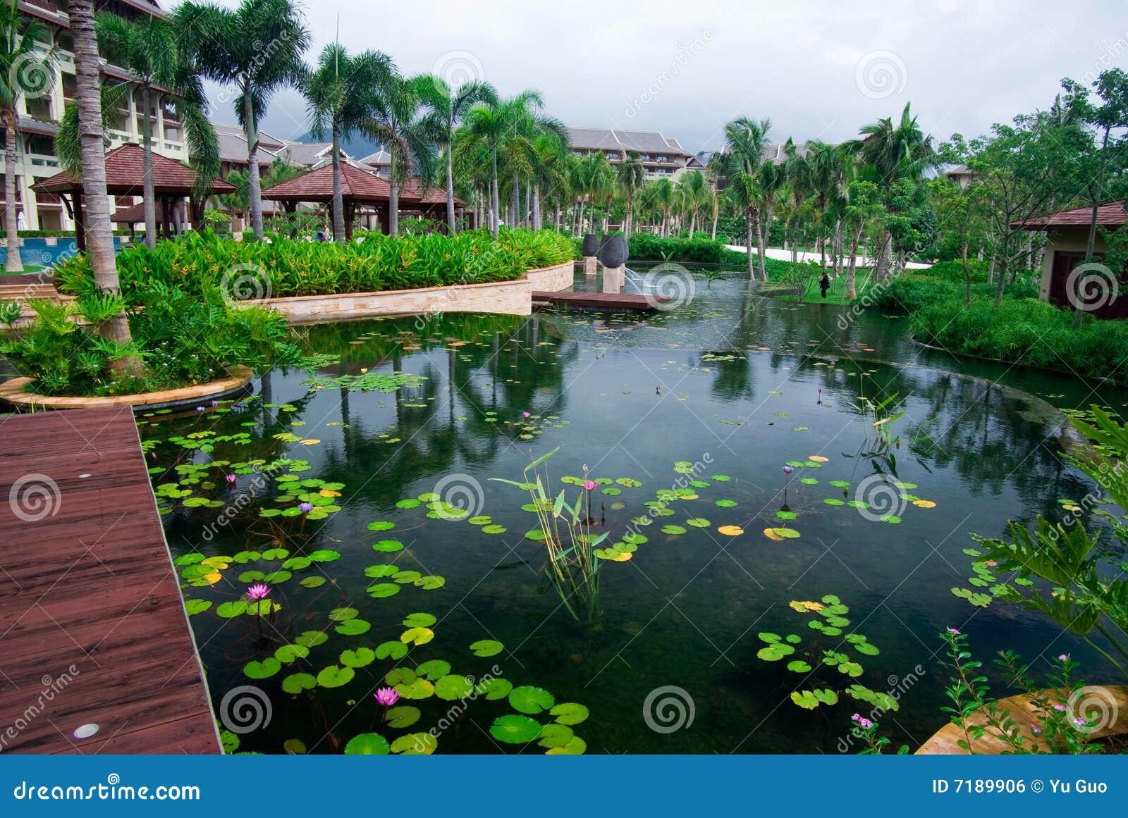 όψη κήπων