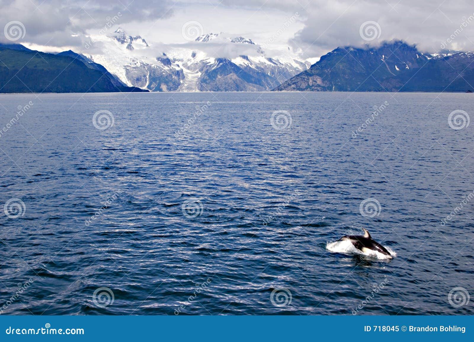 όψη της Αλάσκας