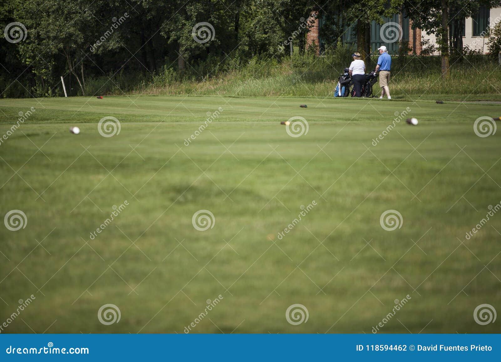 Ώριμο ζεύγος των φορέων γκολφ