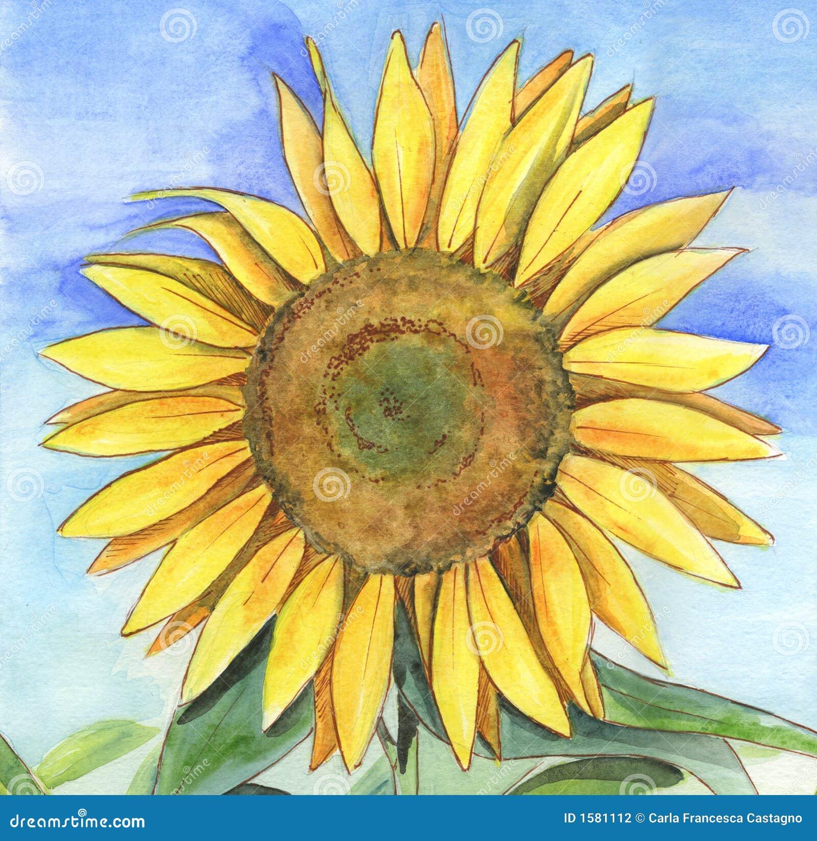 手画向日葵水彩