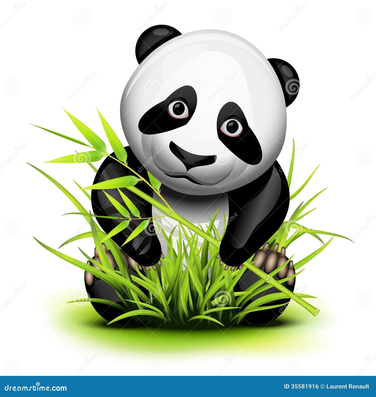 小熊猫和竹子在草
