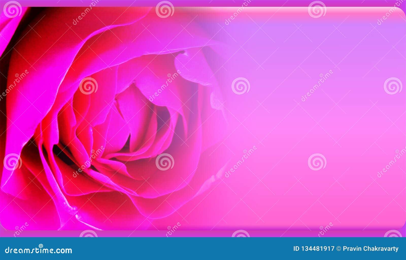 Абстрактный шаблон предпосылки цветка для вебсайта, знамени, визитной карточки, приглашения Абстрактный дизайн шаблона графиков и
