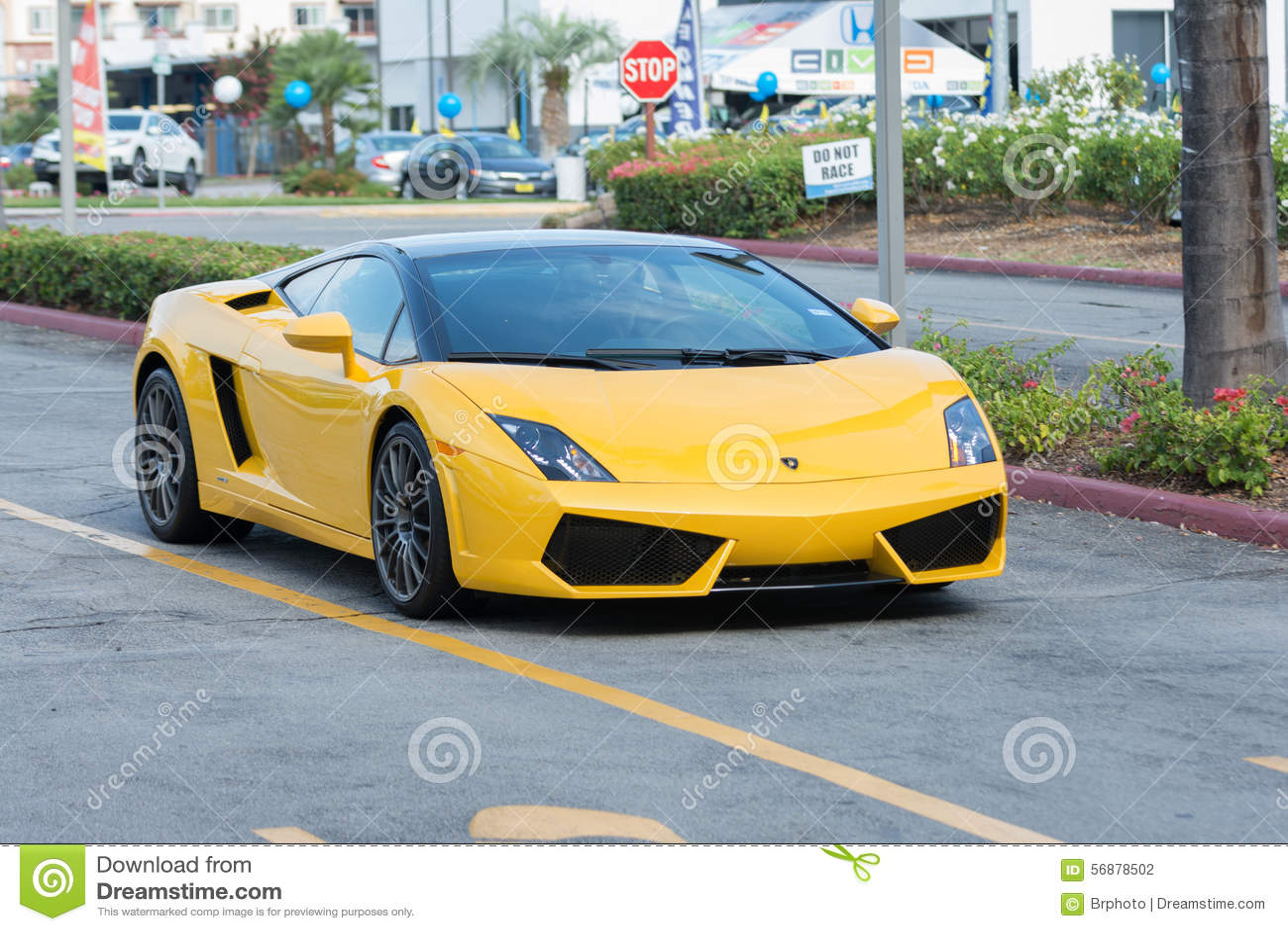 Автомобиль Lamborghini Gallardo на дисплее