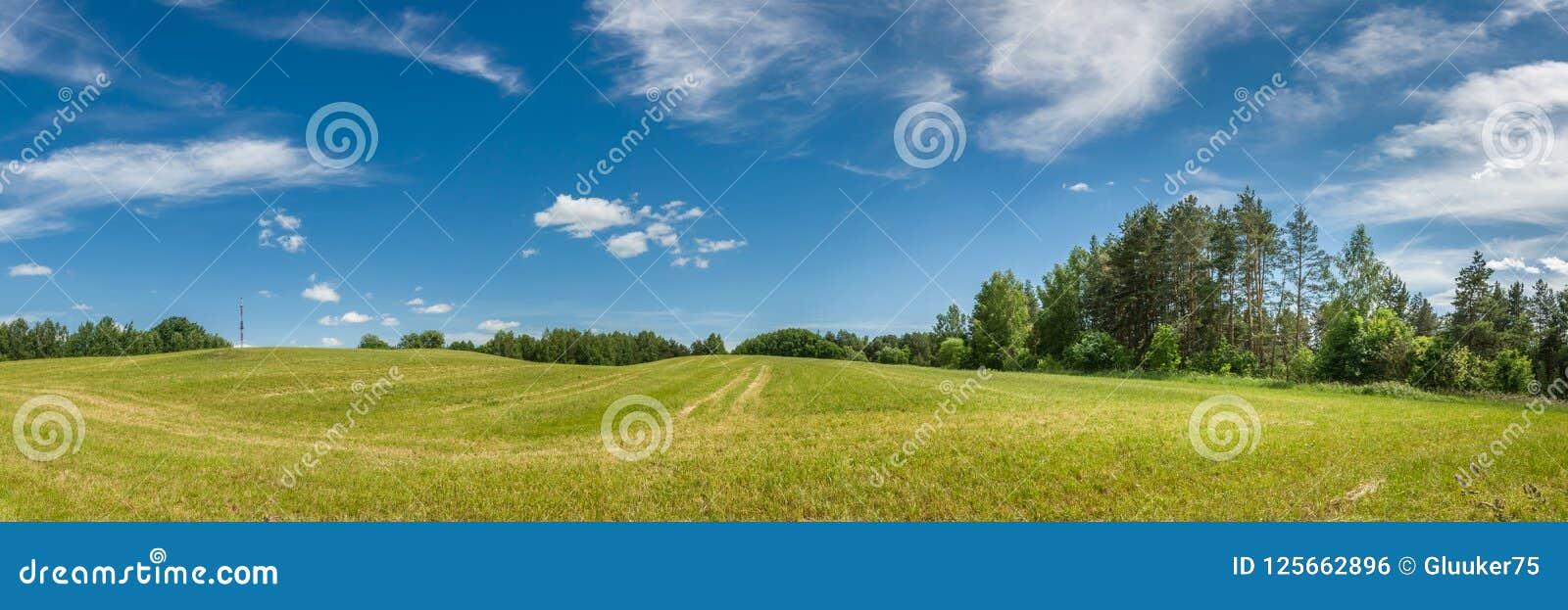 аграрное лето ландшафта панорамный взгляд холмистого поля под голубым облачным небом