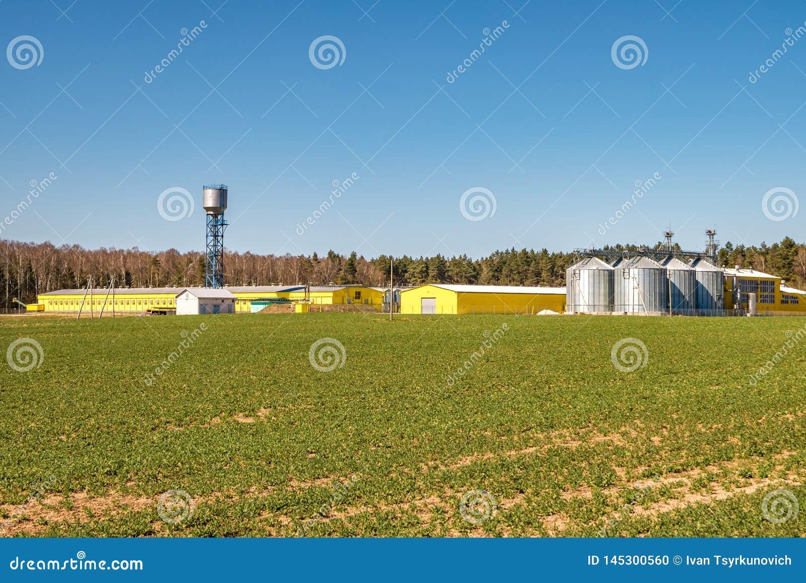 Агро-обработка завода для обработки и силосохранилищ для чистки засыхания и хранения сельскохозяйственных продуктов, муки, хлопье