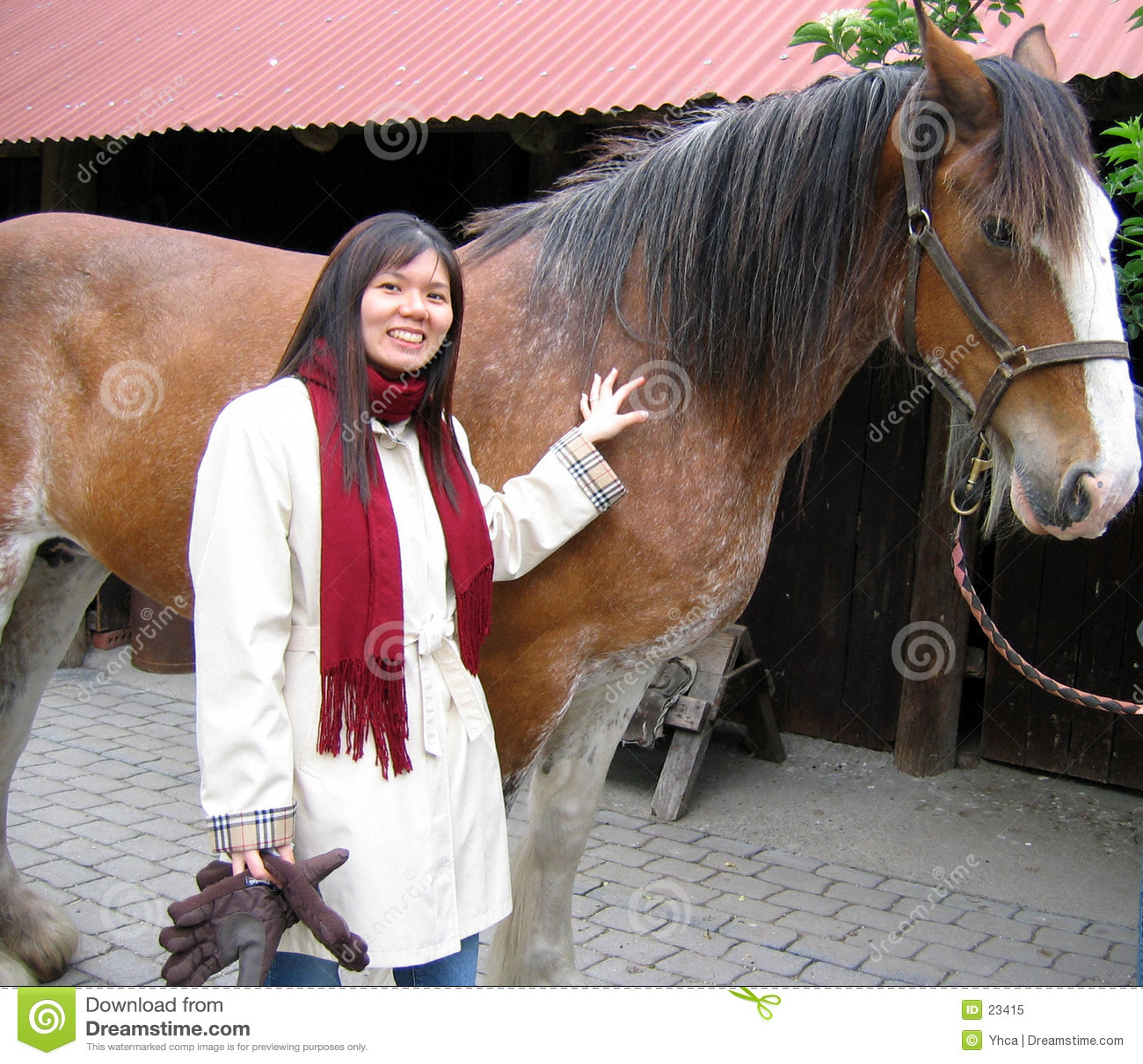 азиатская женщина лошади