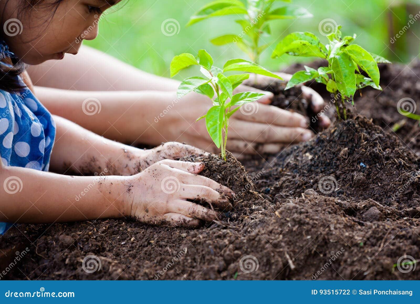 Азиатская маленькая девочка и родитель засаживая молодое дерево на черной почве