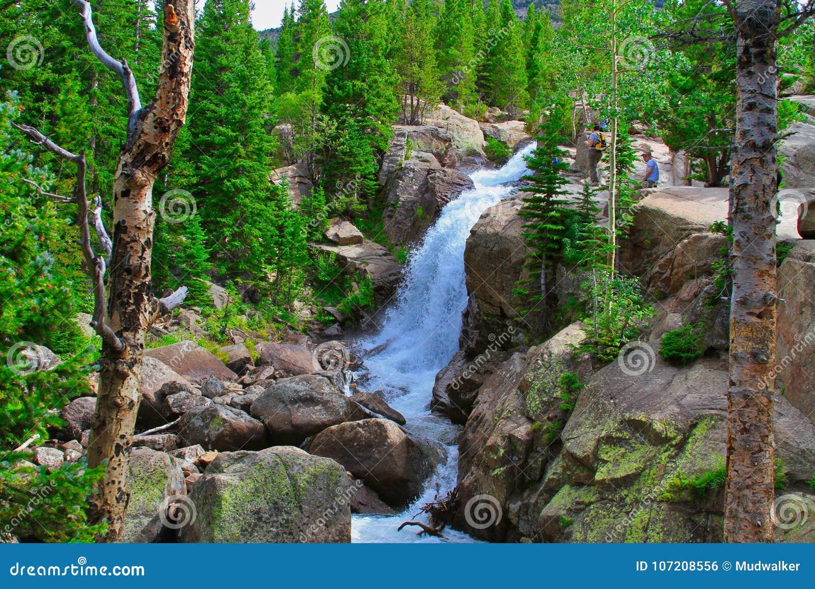 Альберта падает в национальный парк скалистой горы