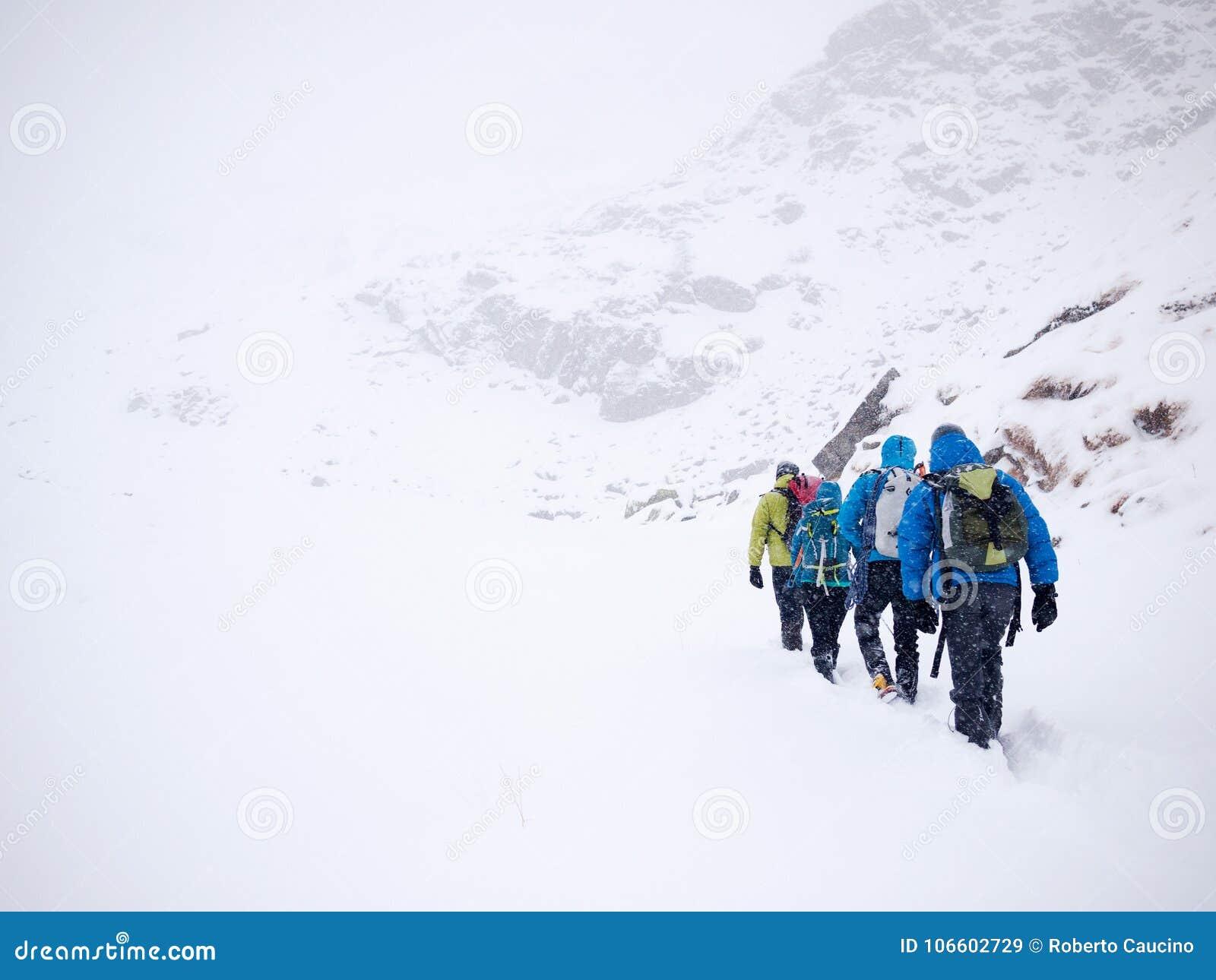 Альпинисты объединяются в команду прогулки в свежем снеге во время экспедиции зимы