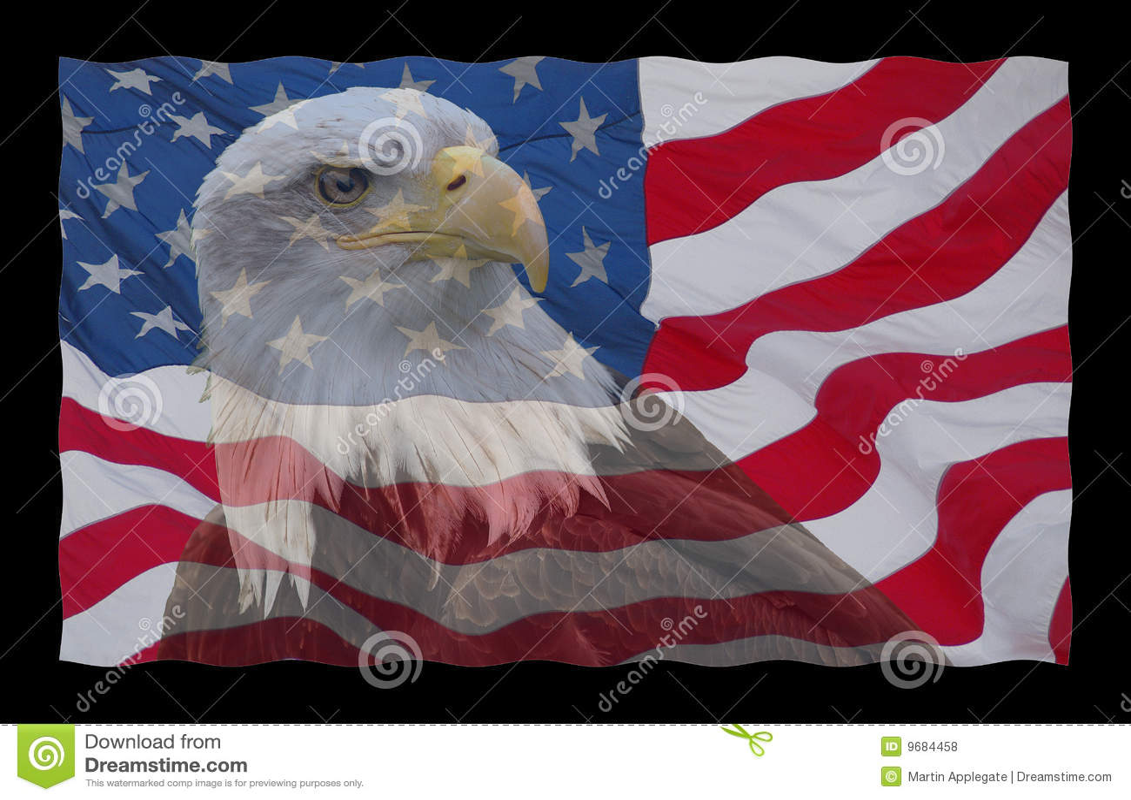 американский флаг облыселого орла