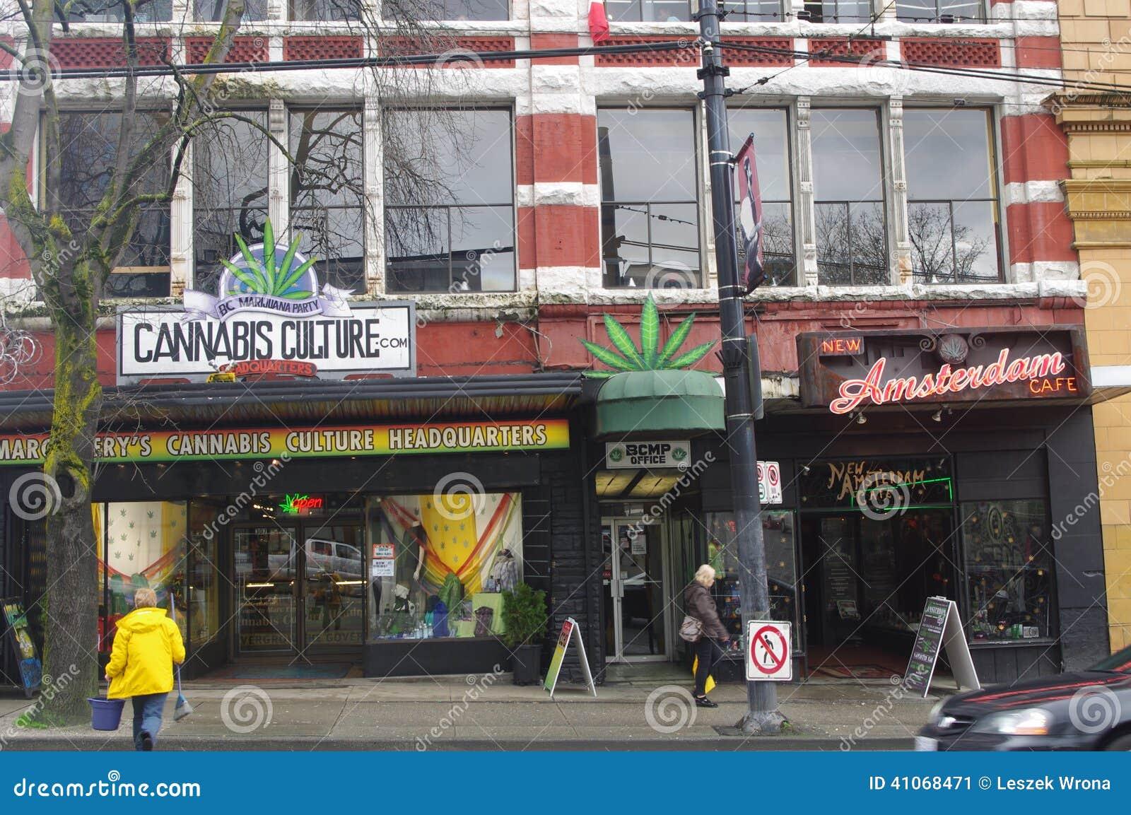 Кафе в амстердаме конопля заказать семена марихуаны купить