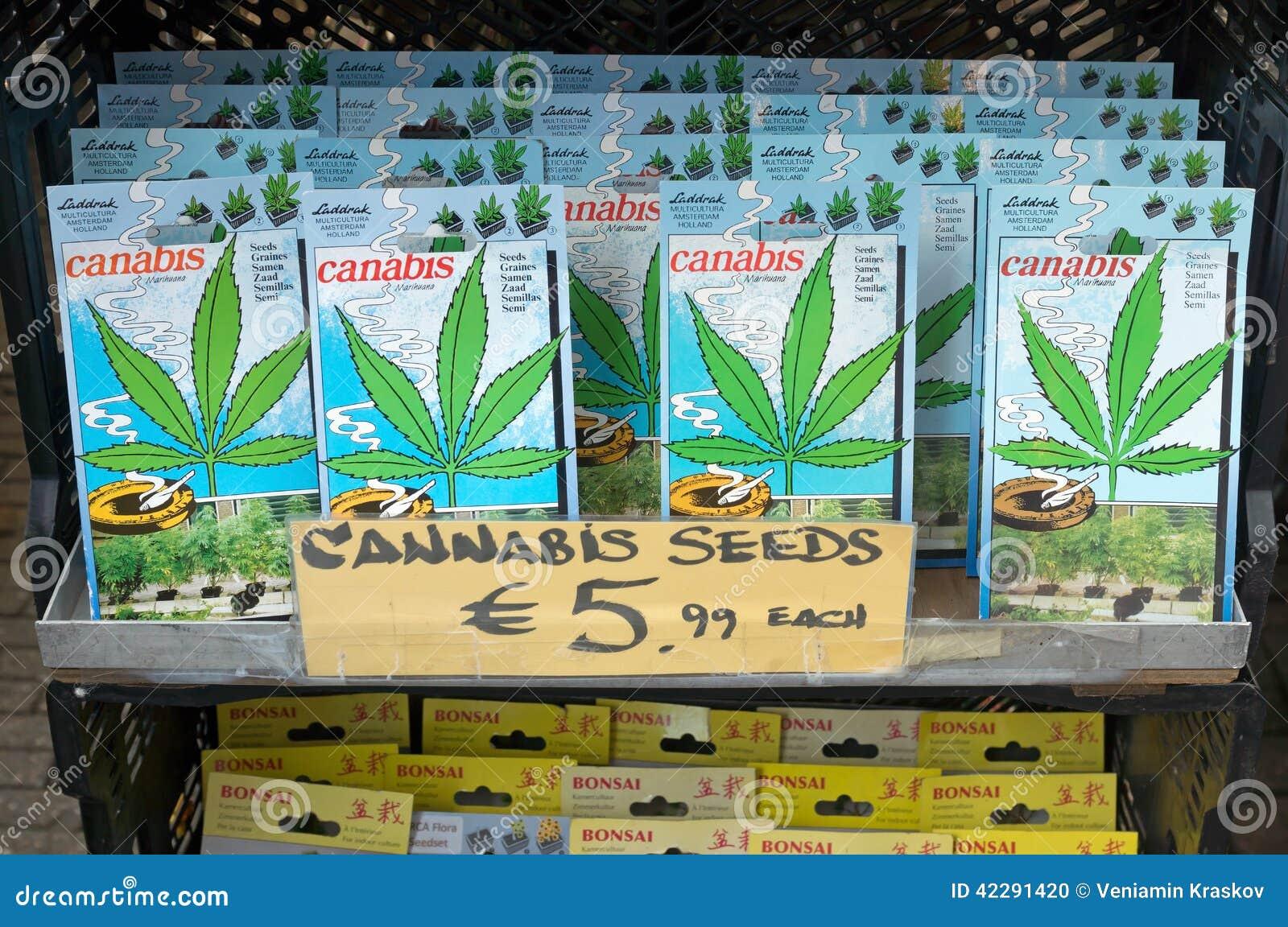 Семена конопли амстердам скачать марихуану бесплатно