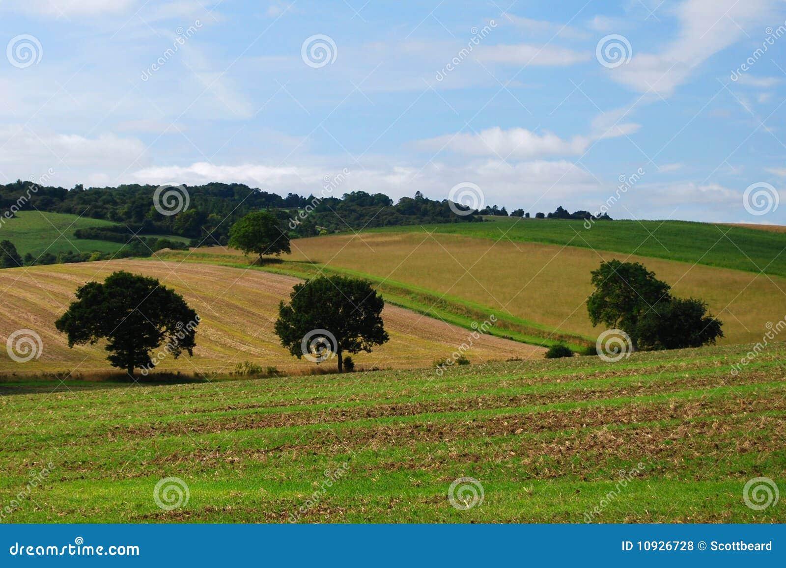 английский ландшафт сельскохозяйствення угодье