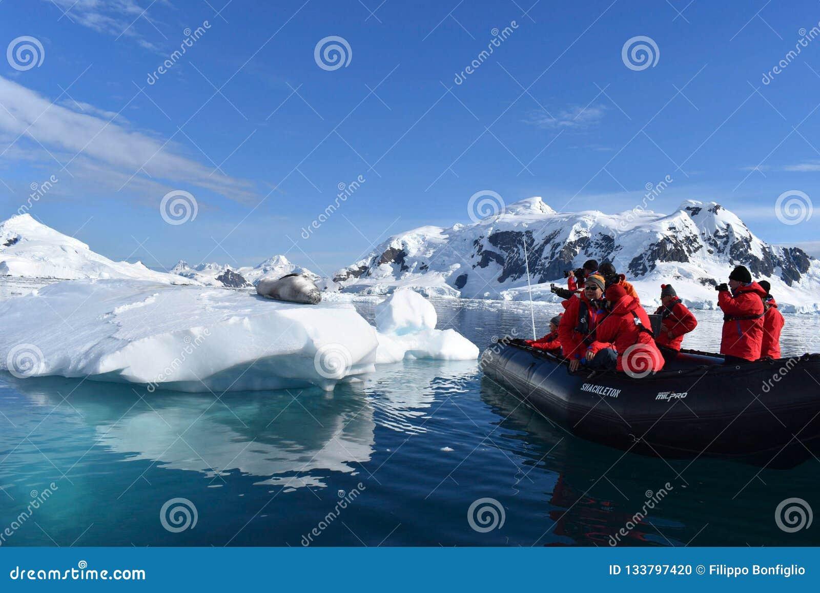 Антарктика, уплотнение леопарда на айсберге с туристами