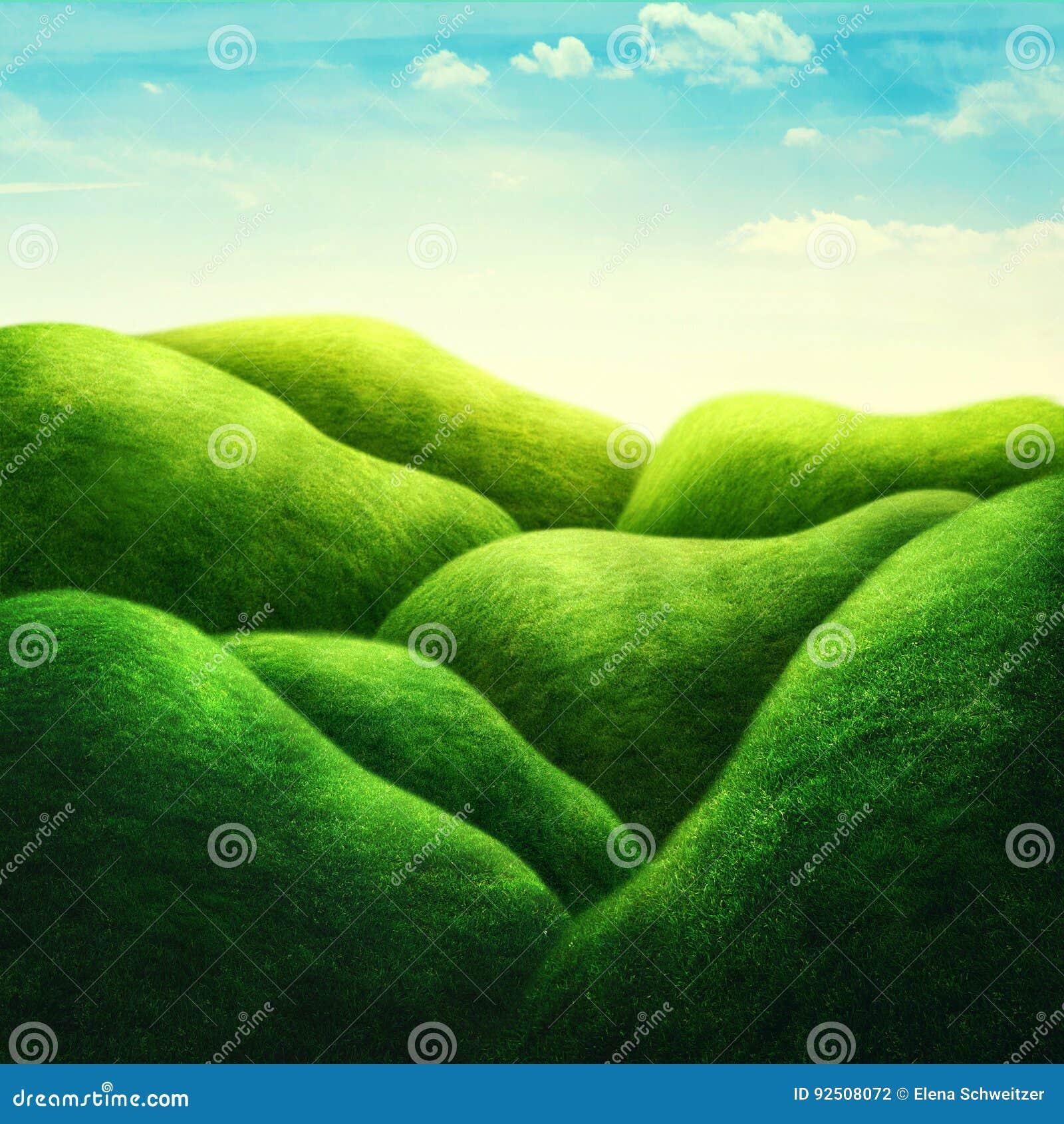 ландшафт поля зеленый