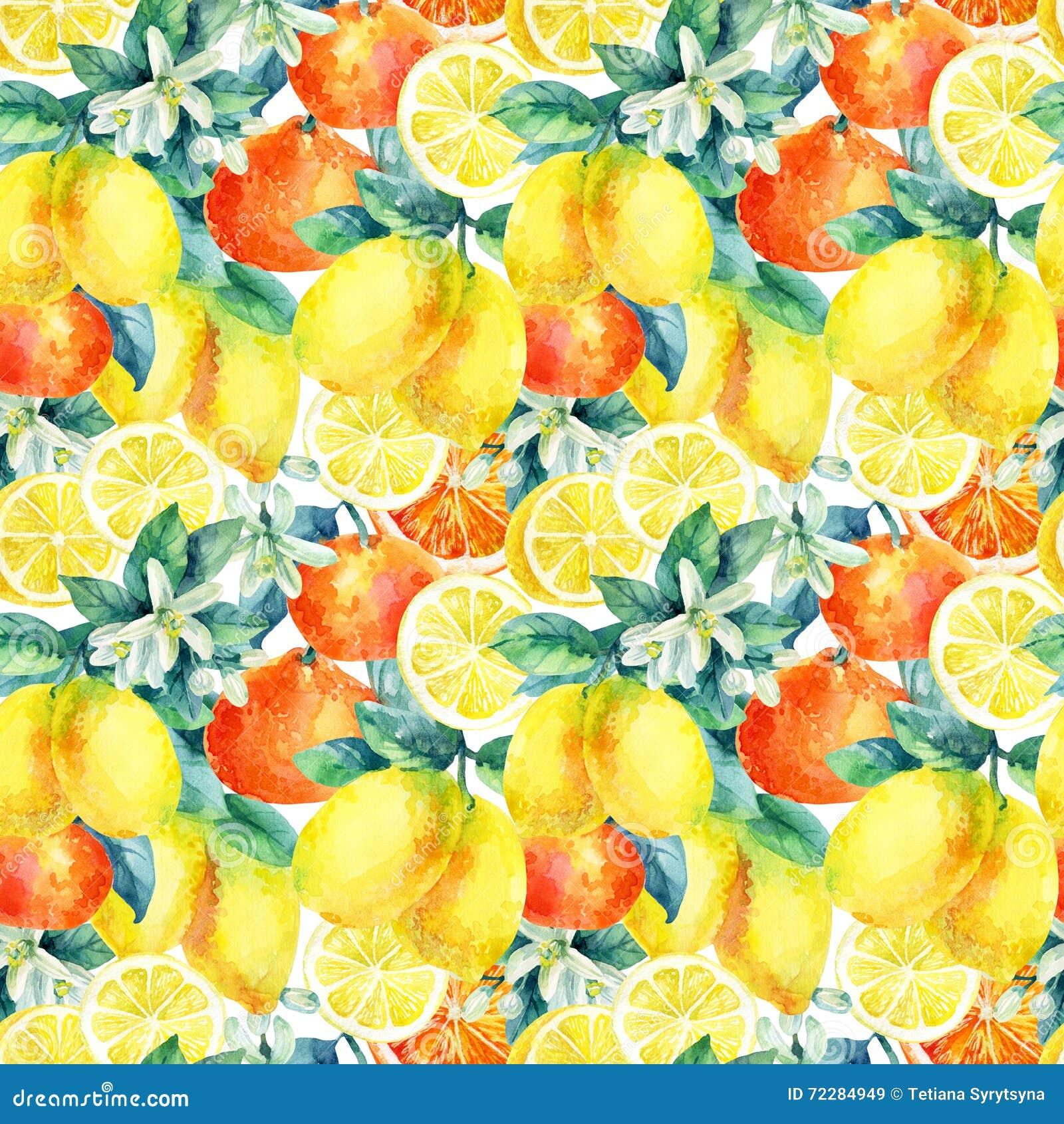 Download Апельсин мандарина акварели и плодоовощ лимона разветвляют с картиной листьев безшовной Иллюстрация штока - иллюстрации насчитывающей померанцово, brampton: 72284949