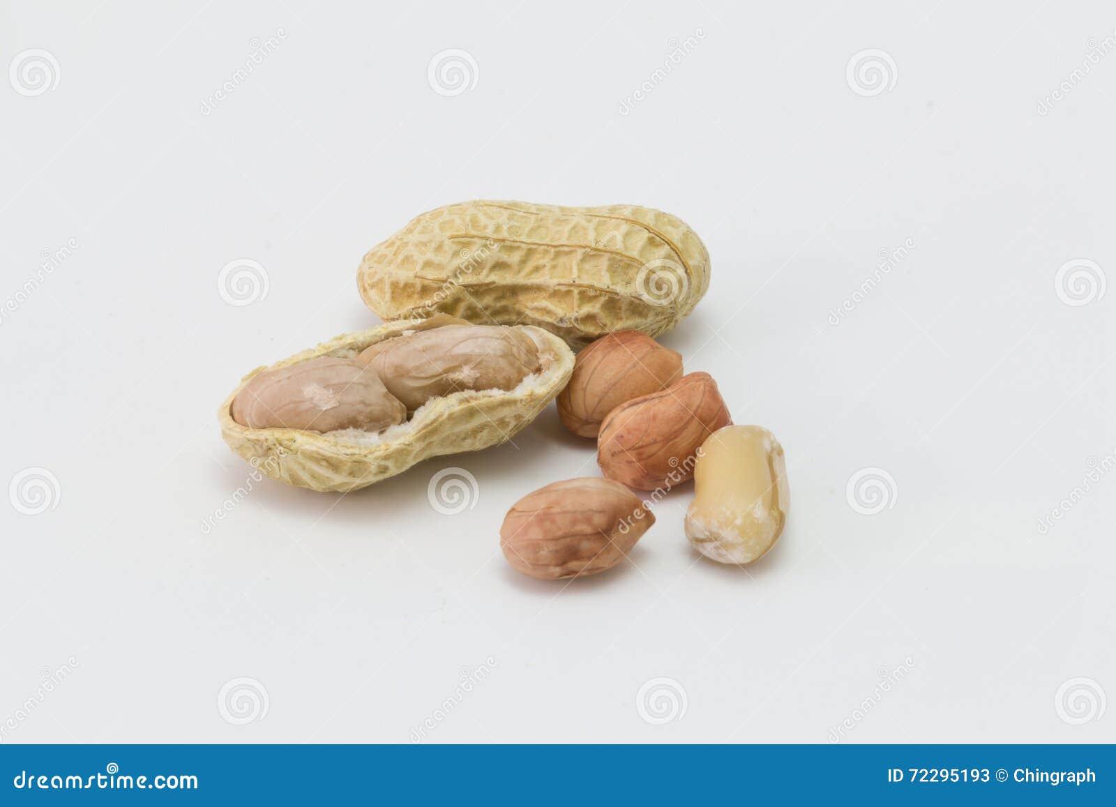 Download Арахис изолированный на белизне, арахис, сухой арахис Стоковое Изображение - изображение насчитывающей еда, nutrient: 72295193