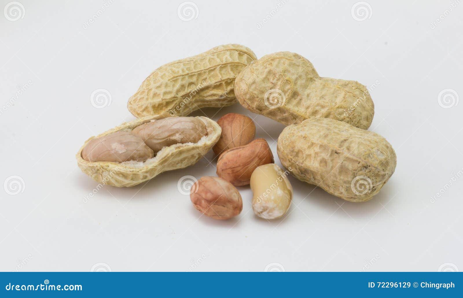 Download Арахис изолированный на белизне, арахис, сухой арахис Стоковое Изображение - изображение насчитывающей здорово, арахис: 72296129