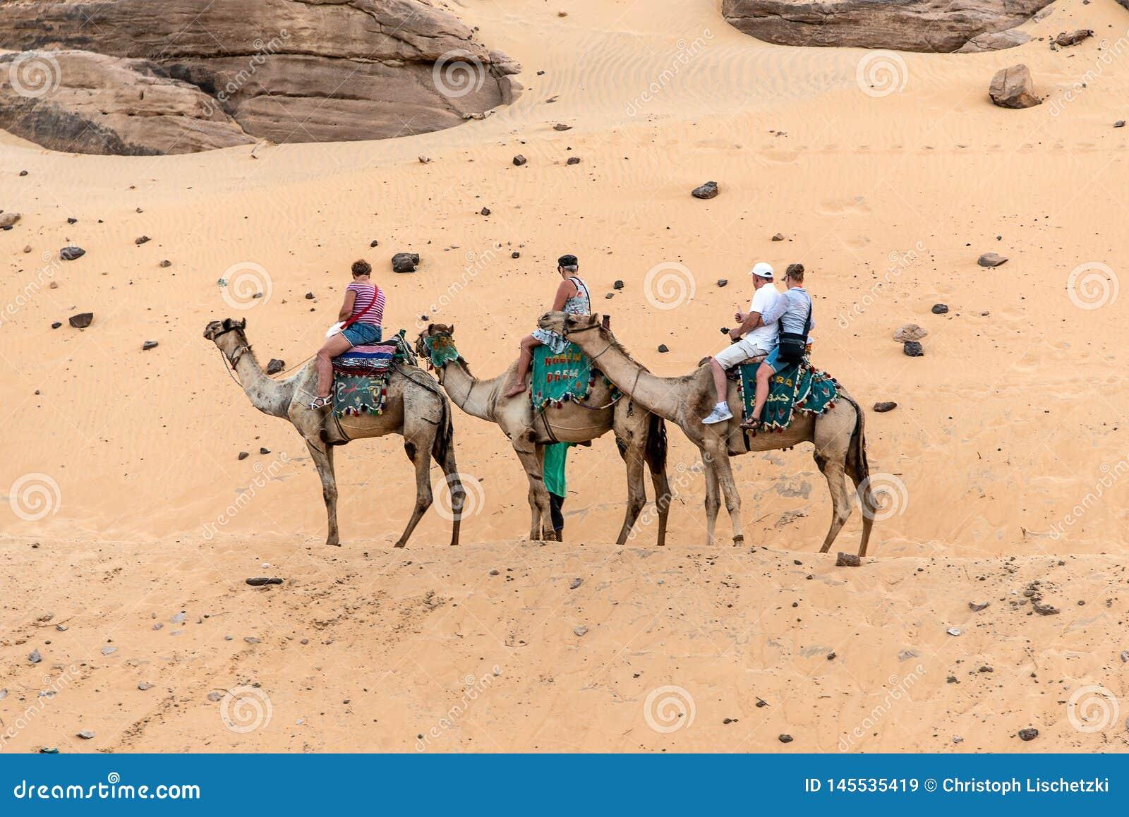 АСУАН, ЕГИПЕТ 18 05 2018 туристов на борту путешествия верблюда к деревне Nubian западный берег реки Нила в области Асуана