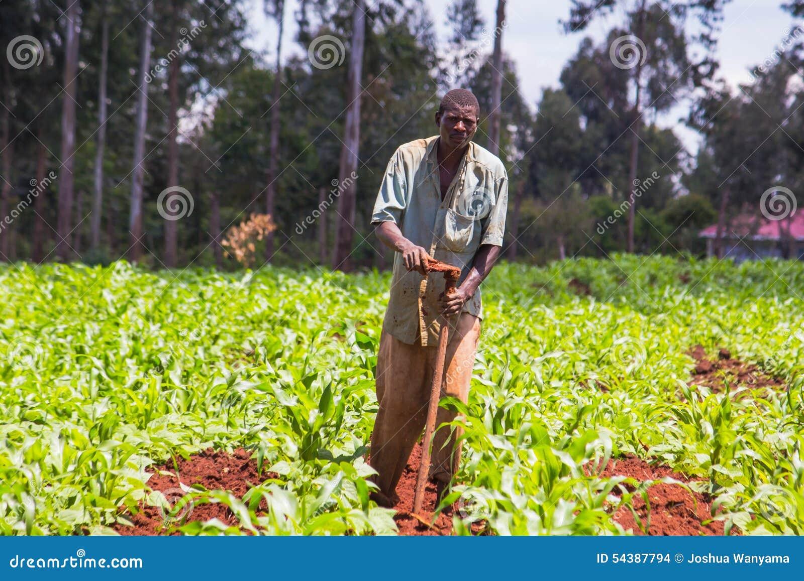 Африканский weeding фермера