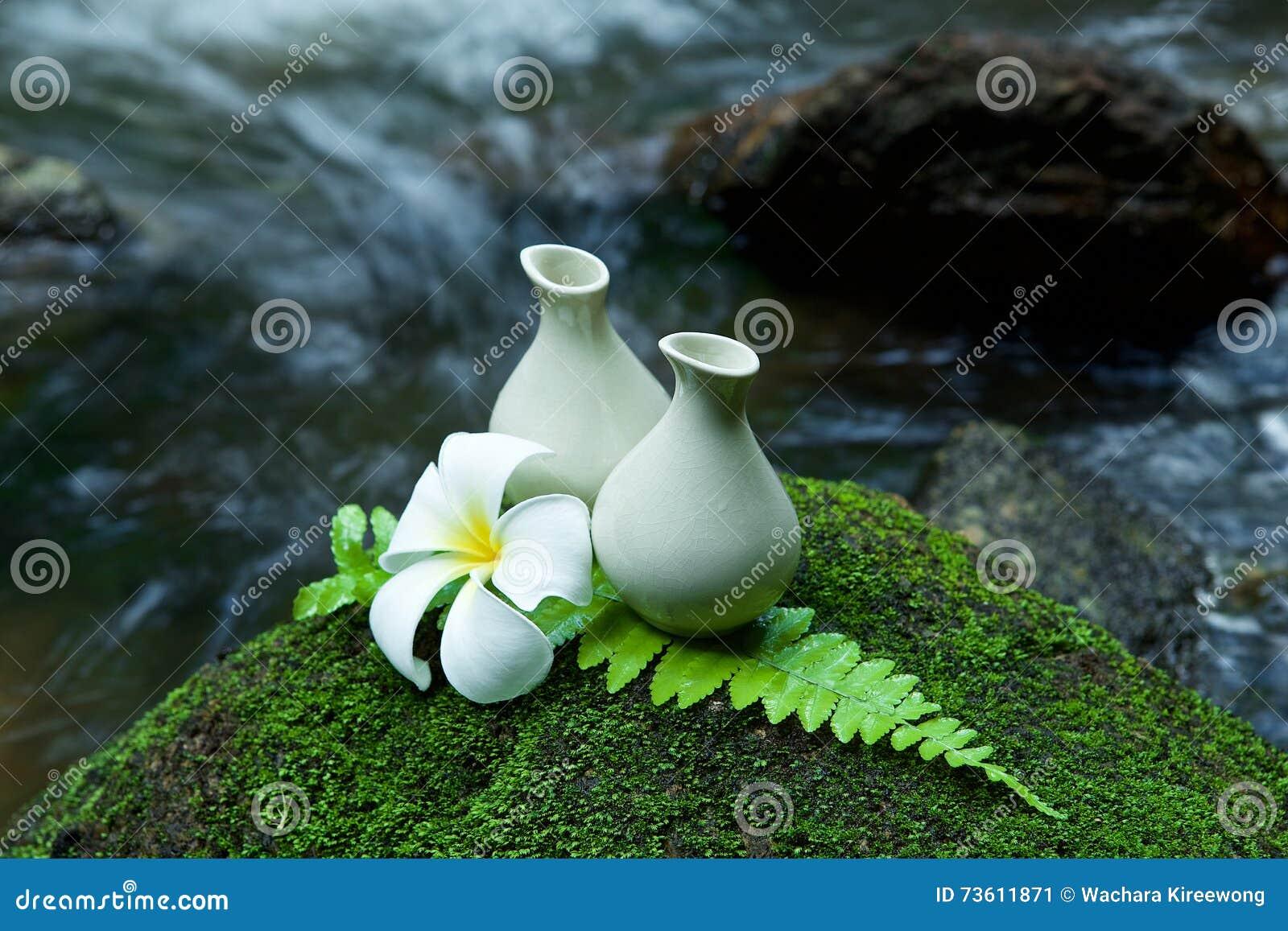Альтернативные лосьон и pumerlia заботы кожи домодельные цветут на st