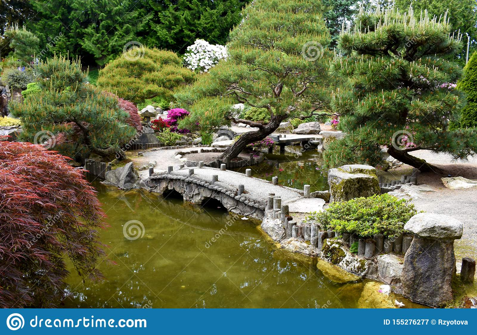 A Little Bridge In The Botanical Garden Stock Image Image Of