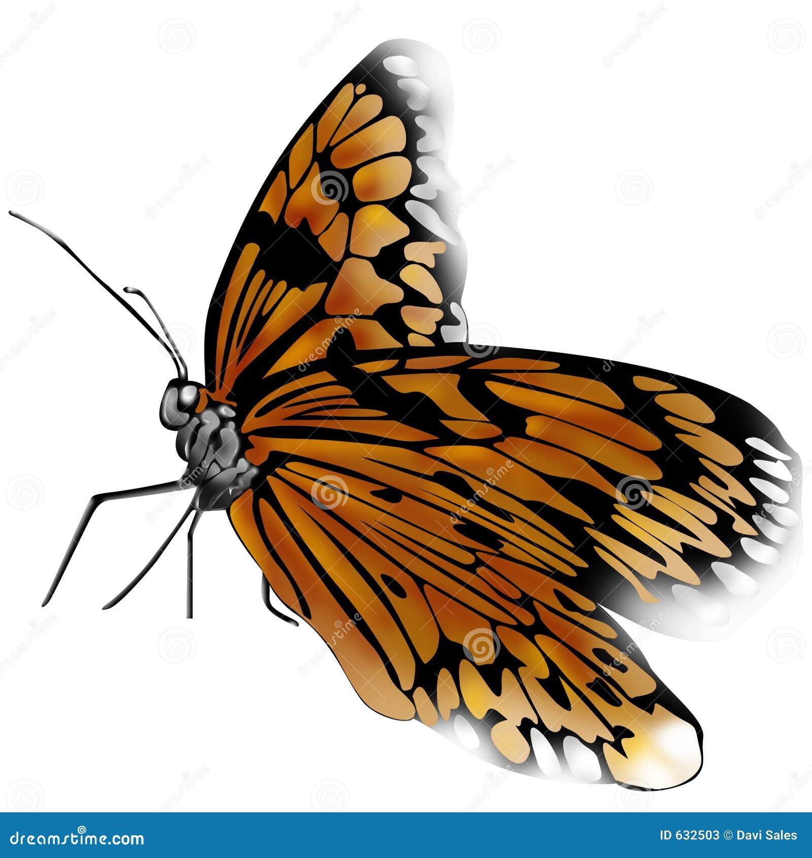 Download бабочка иллюстрация штока. иллюстрации насчитывающей жизнь - 632503