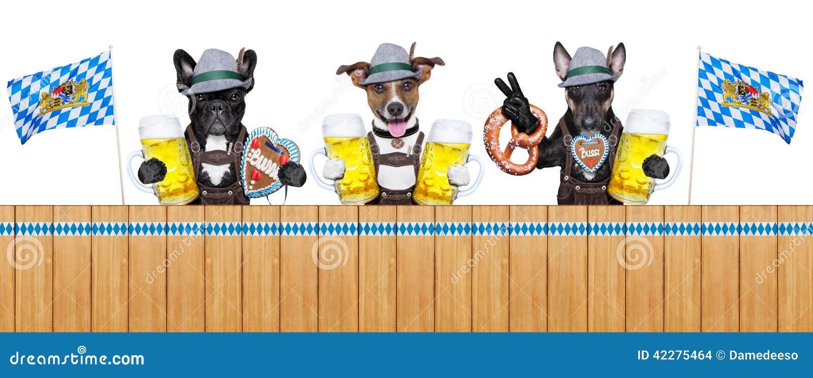Баварские собаки