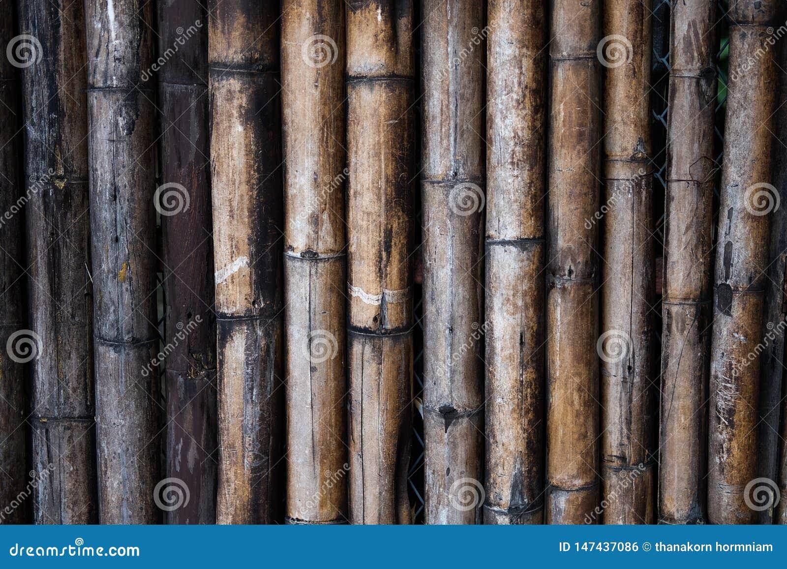 Бамбуковая деревянная стена