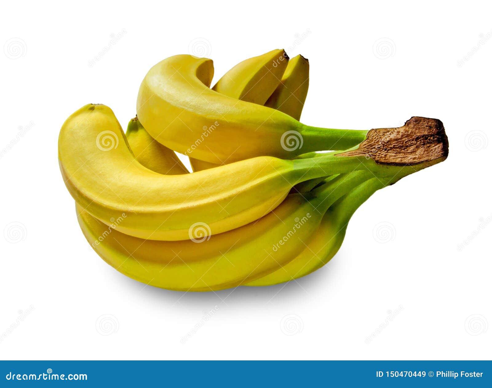 Бананы в студии