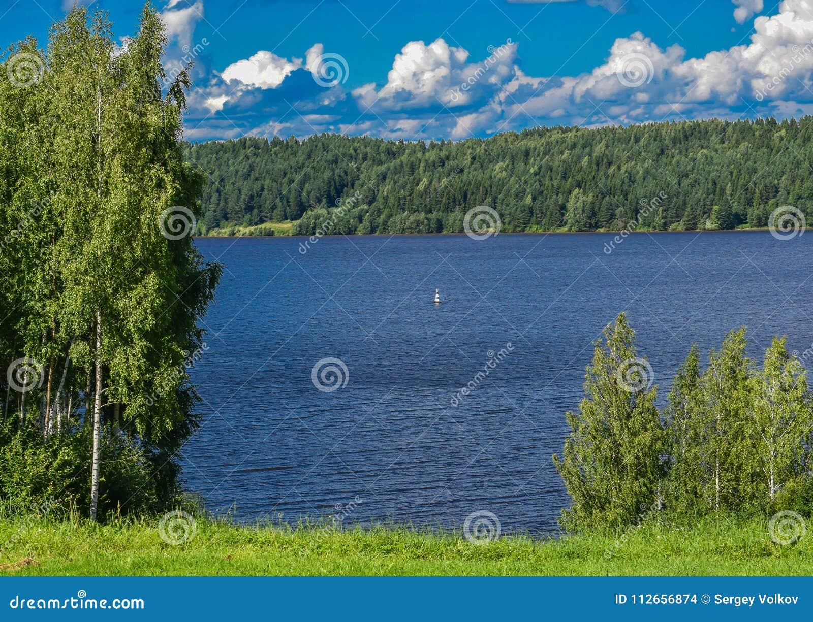 Банки леса на Реке Волга