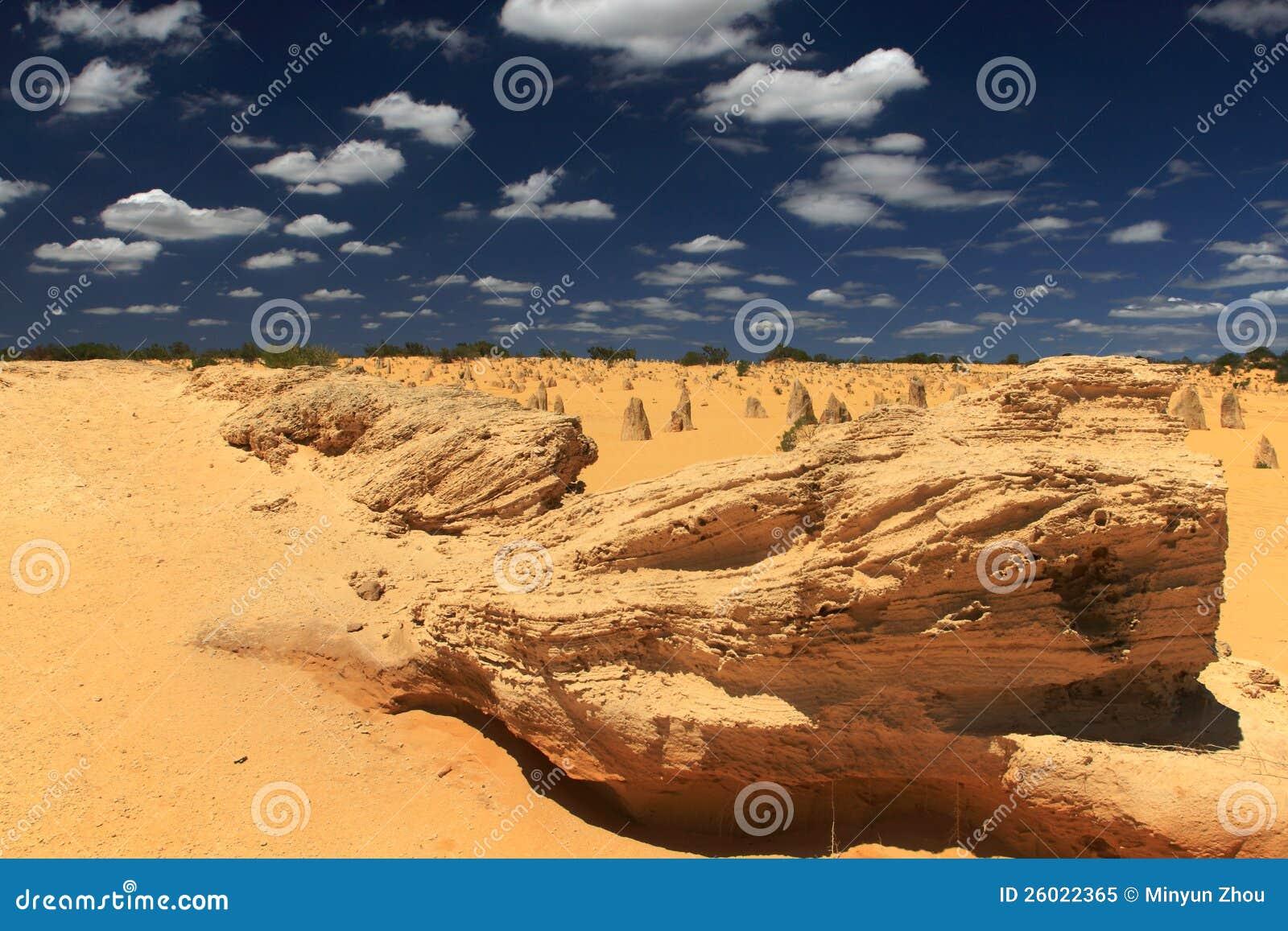 Башенкы дезертируют, западная Австралия