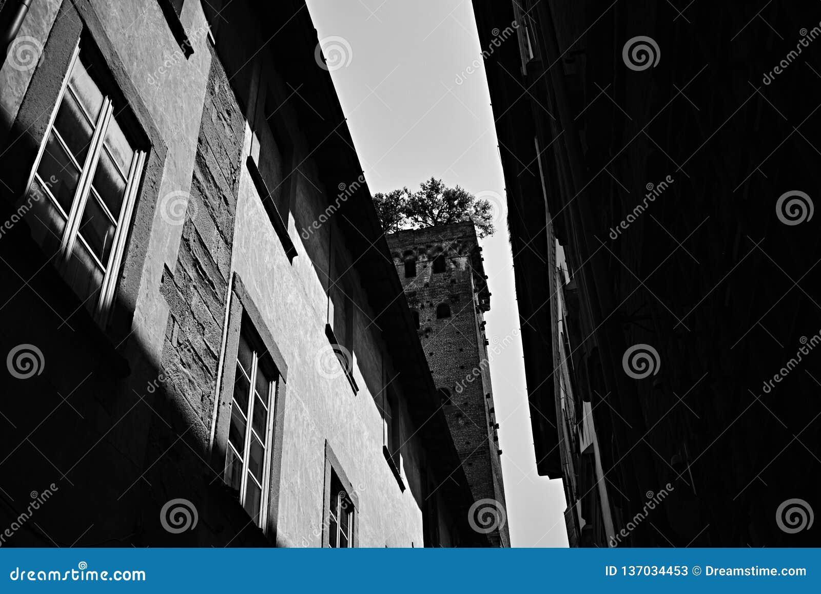 Башня в черно-белом