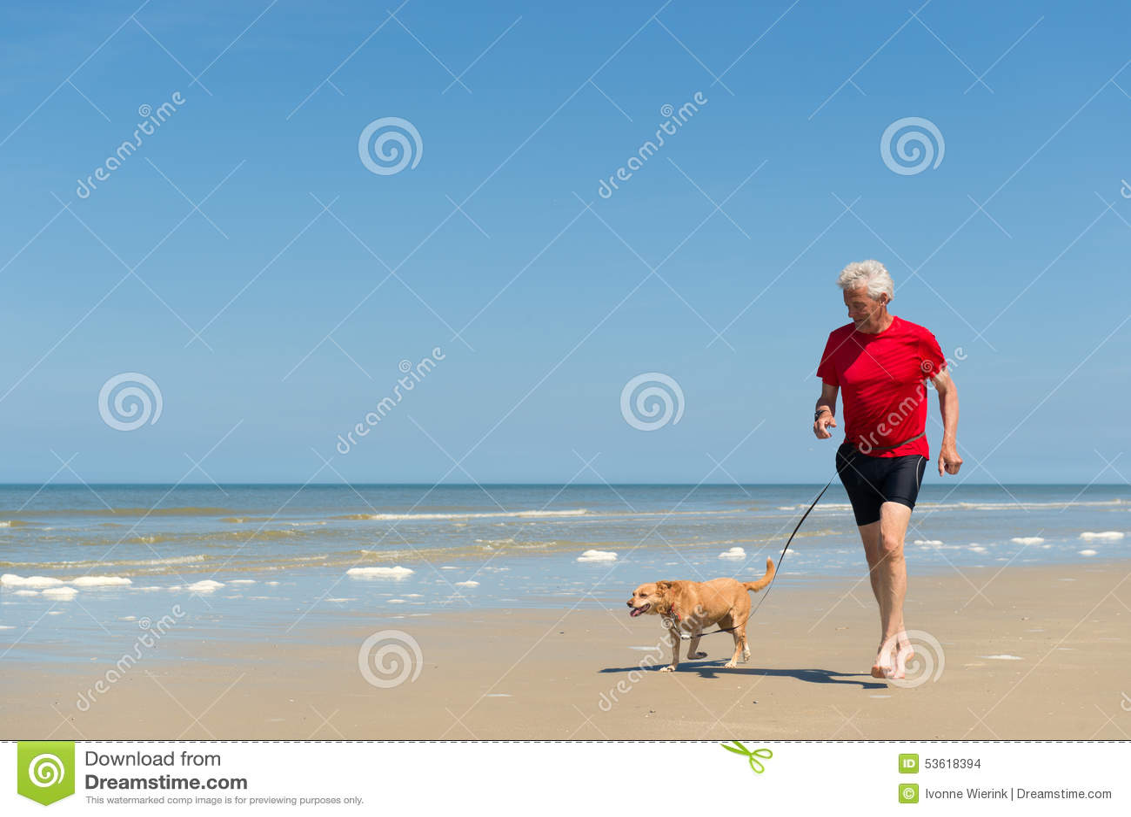 Бежать с собакой на пляже