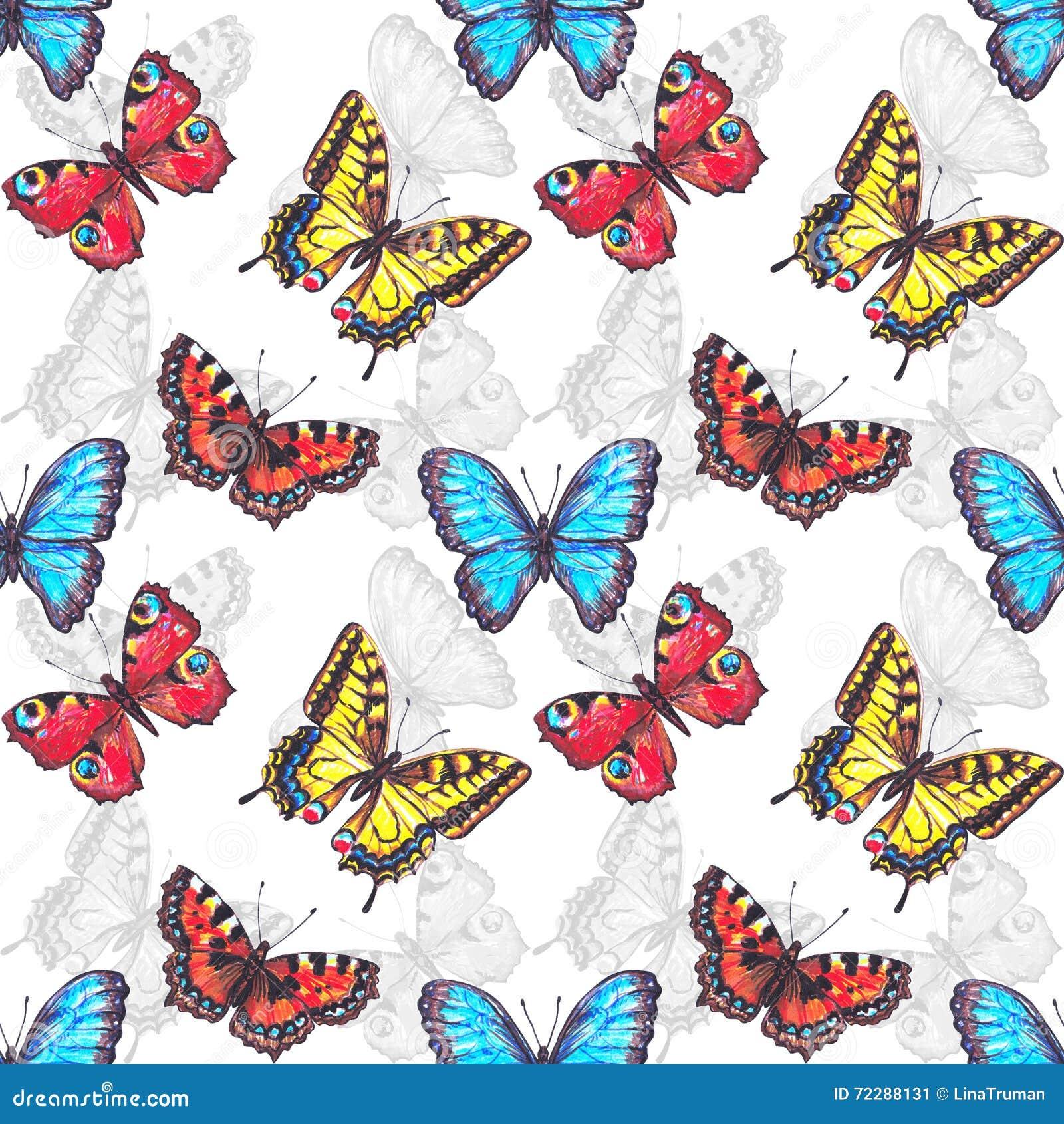 Download Безшовная картина бабочек иллюстрация штока. иллюстрации насчитывающей backhoe - 72288131