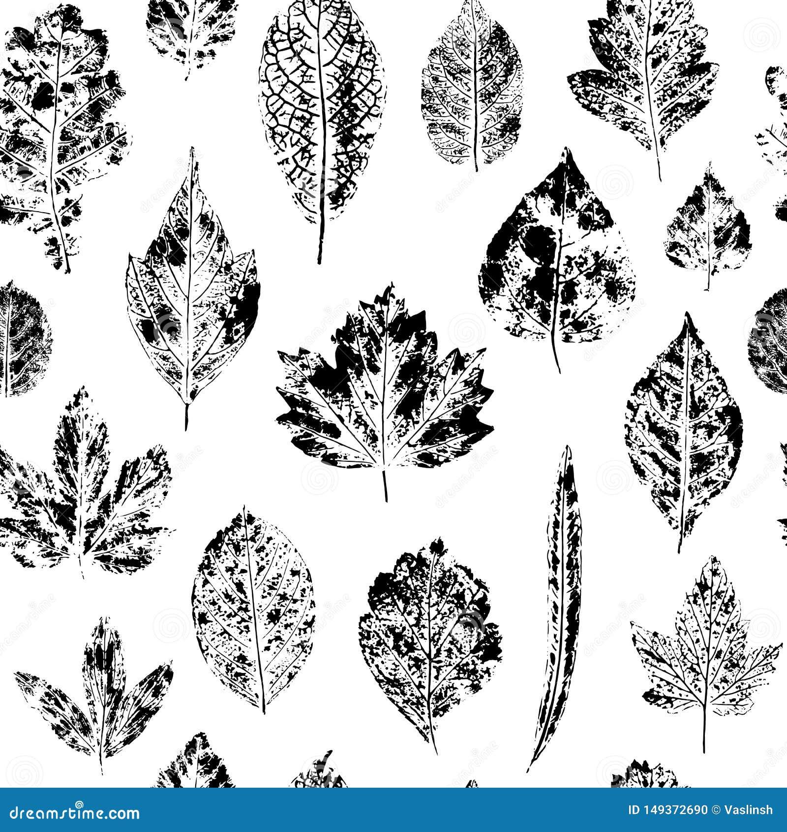 Безшовная картина печатей лист